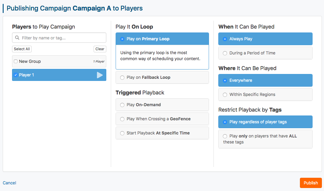 campaign publishing settings