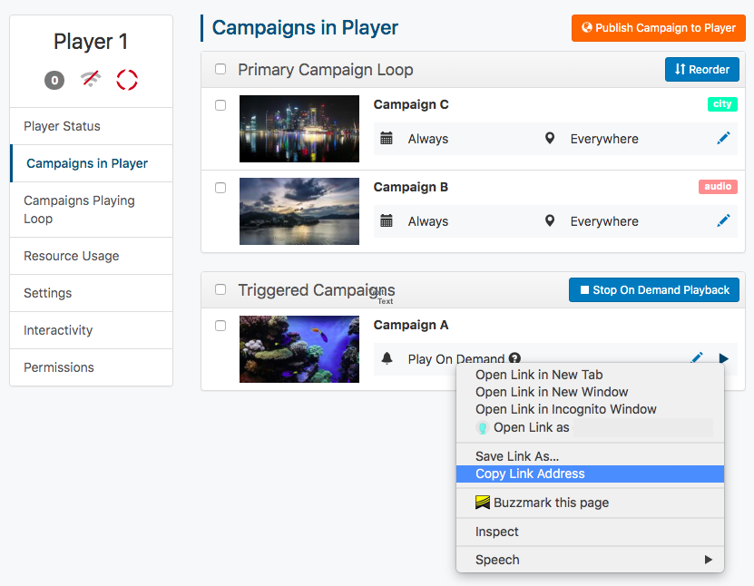 copy on demand campaign url